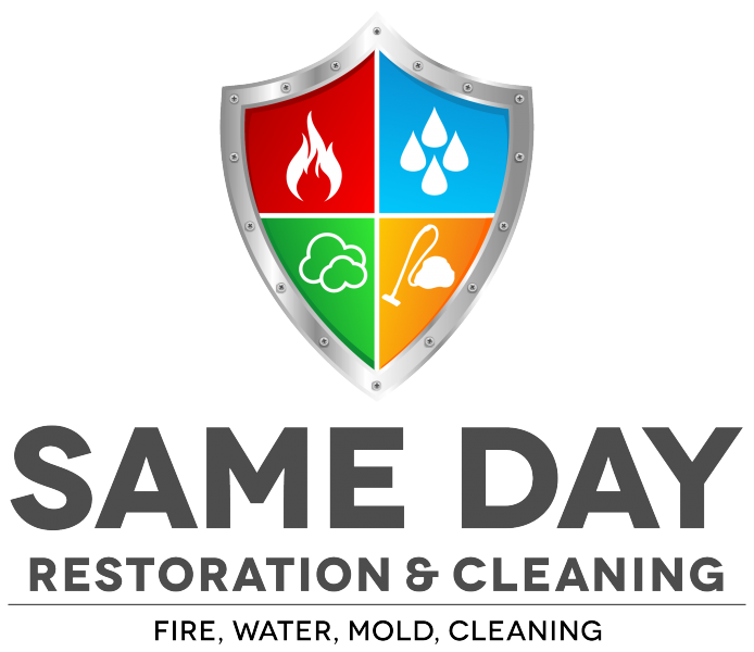 Same Day Restoration of San Diego Logo